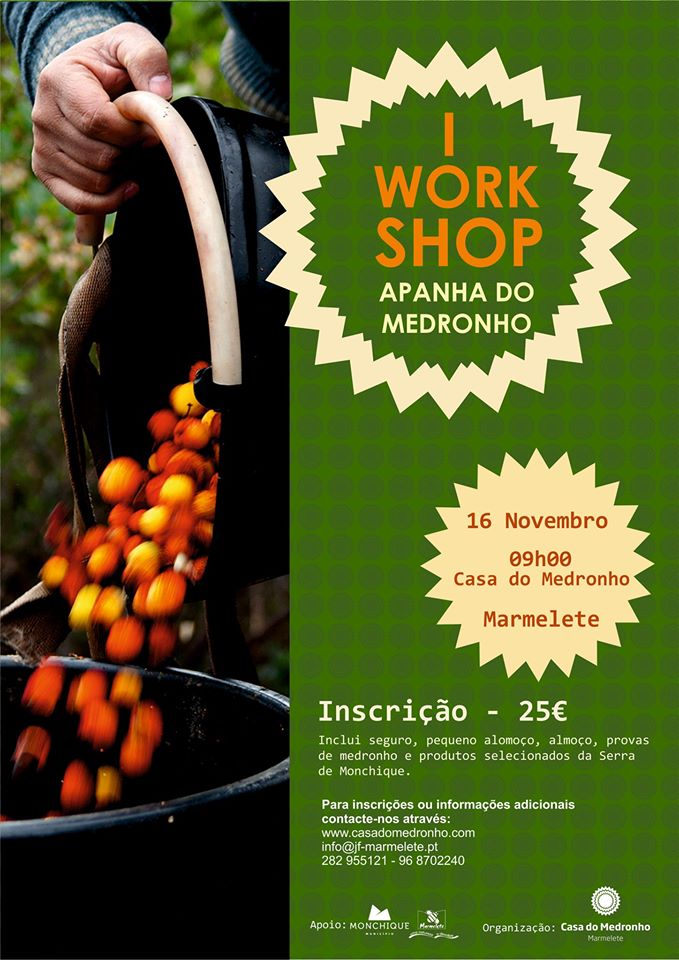 Iº workshop – Apanha do Medronho